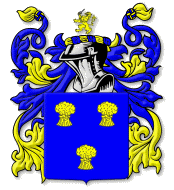 One example of a Cummins Family Coat of Arms